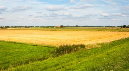 14956901 - golden stubble-field in a colorful rural landscape.